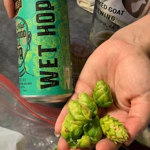 wet hop beer